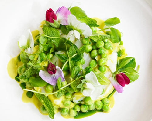 Salt cod, green peas, mint vinaigrette and pea shoots